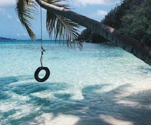 sea, beach, and palm tree image