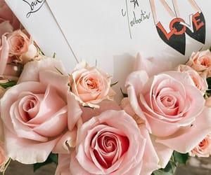 flower, instagram, and manami_kakehashi image