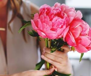 цветы, листья, and букет image