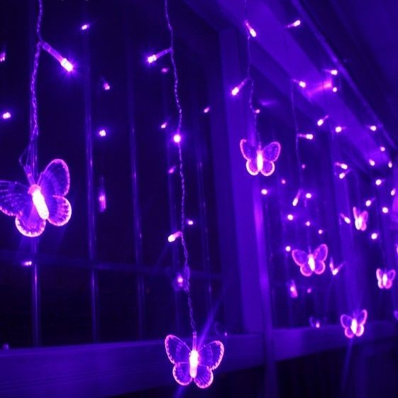 butterfly, light, and purple image