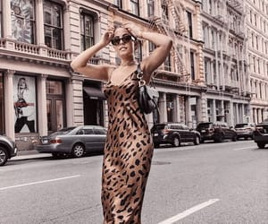 accessories, animal print, and architecture image