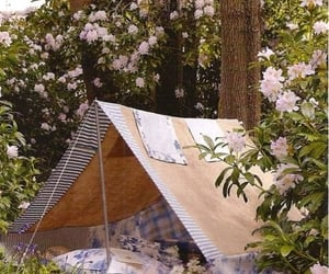 tent, flowers, and nature image