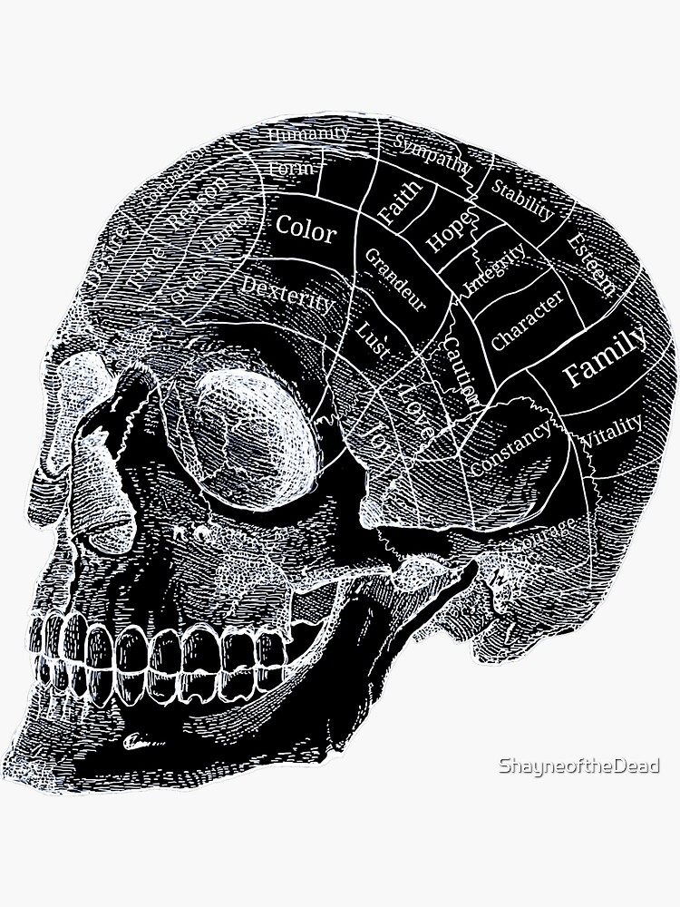 goth, occult, and phrenology image
