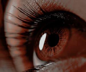 brown and brown eyes image