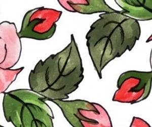 floral print, header, and pattern image