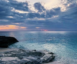 beach, nature, and sea image