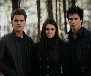 the vampire diaries, Nina Dobrev, and damon image