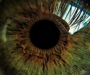 aesthetic, eye, and iris image