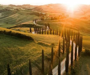 evening, grass, and italy image