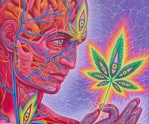 weed, art, and marijuana image