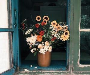 aesthetics, orange flowers, and feelings image
