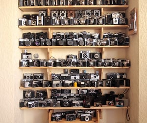 11, Camera Porn, and collection image