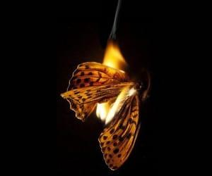 огонь, красиво, and пламя image