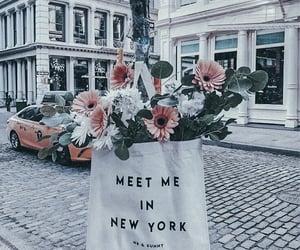 Brooklyn, flowers, and manhattan image