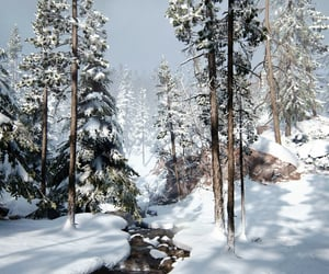 cold, winter, and forest image