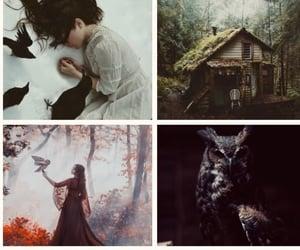 beautiful, charakters, and fantasy image