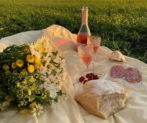 picnic, food, and aesthetic image