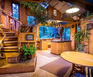 cozy, hawaii, and home image