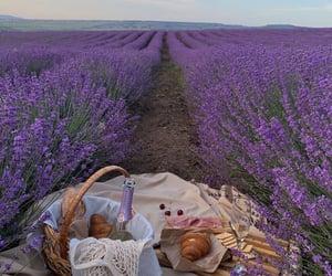 picnic, croissant, and lavender image