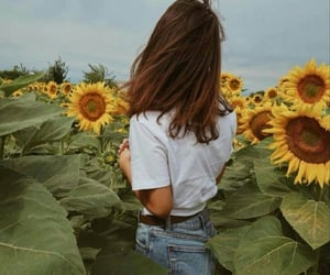 girl, sunflower, and flowers image