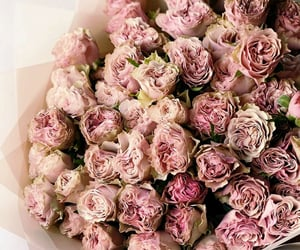 flowers, fashion, and roses image