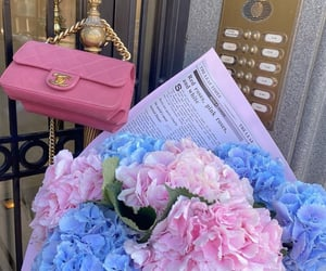 aesthetic, bag, and bouquet image