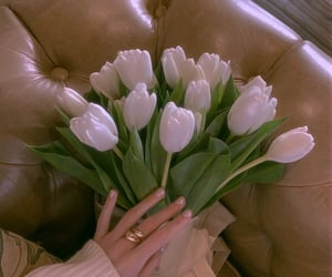 beautiful day, flowers, and soft image