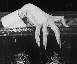 vampire, Dracula, and coffin image