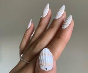 nails, nail art, and shell image
