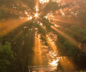sun, nature, and road image
