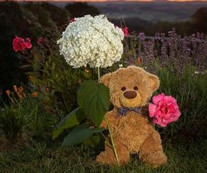 flowers, teddybear, and cute image