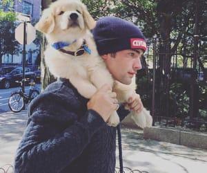 boy, seano'pry, and dog image