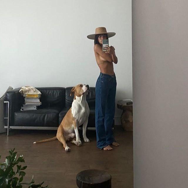 aesthetic, dog, and fashion image
