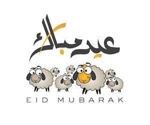 aid, eid el adha, and كبش image