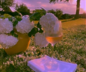 beautiful day, flowers, and drink image