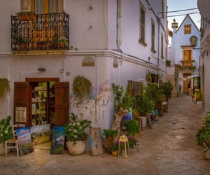 street, flowers, and italy image