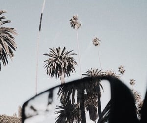 travel, aesthetic, and summer image