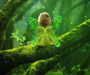 fairy, forest, and green image