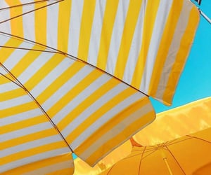 striped, stripes, and umbrellas image