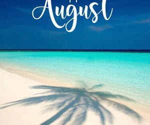 August, palm tree, and vacation image