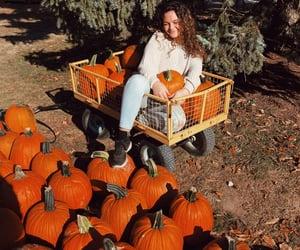 autumn, seasonal, and fall image