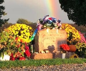 cemetery, indiana, and gravestone image