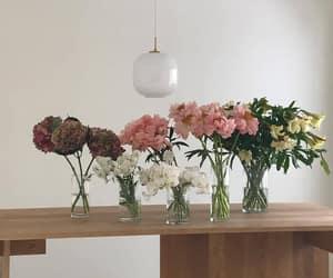 flowers, aesthetic, and minimalist image