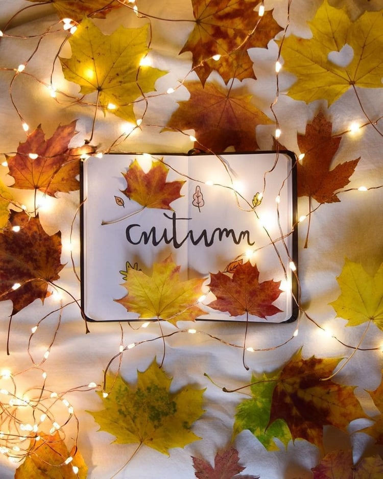 Apple Pie, article, and autumn image