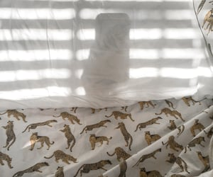 bed, simple, and sunrise image