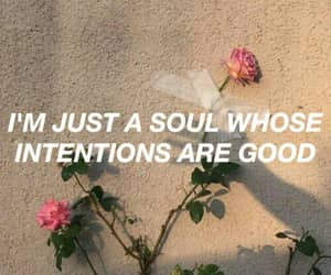 quotes, aesthetic, and honeymoon image