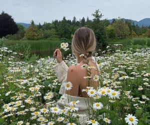 braid, flowers, and outfit image