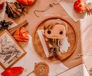 autumn, book, and harrypotter image