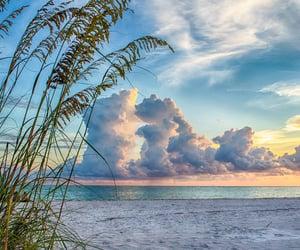 beach, nikon, and ocean image