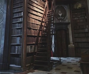 dark academia, dark, and library image